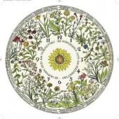 Linnés Blumen-Uhr